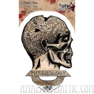 Agorables Zombie Phrenology Sticker